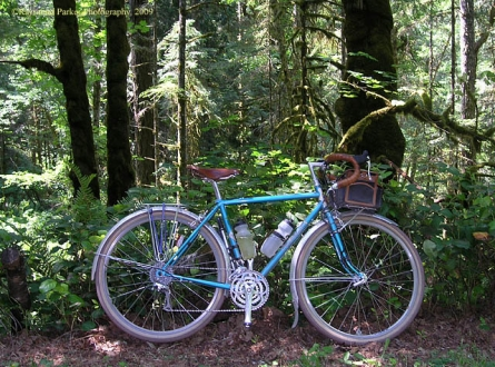 rb_bleriot-in-the-woods