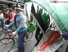cyclists-salmon